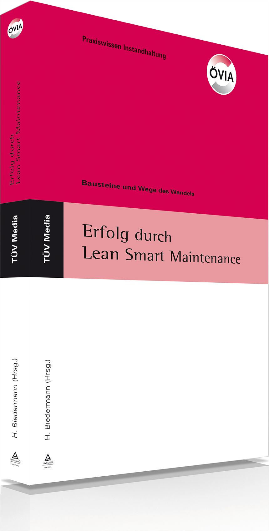 Erfolg durch Lean Smart Maintenance